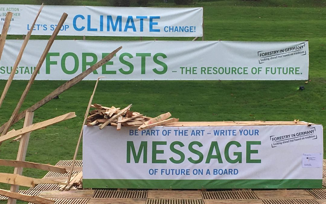 First Day at COP23